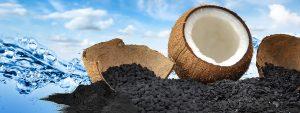 Активированный уголь в сменных кассетах для кувшина Крыни